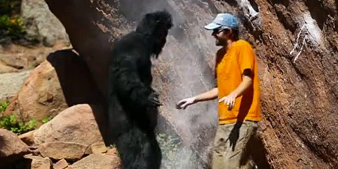 KL Gorilla findet Tickmarks beim Bouldern nicht gut! Access Fund Video