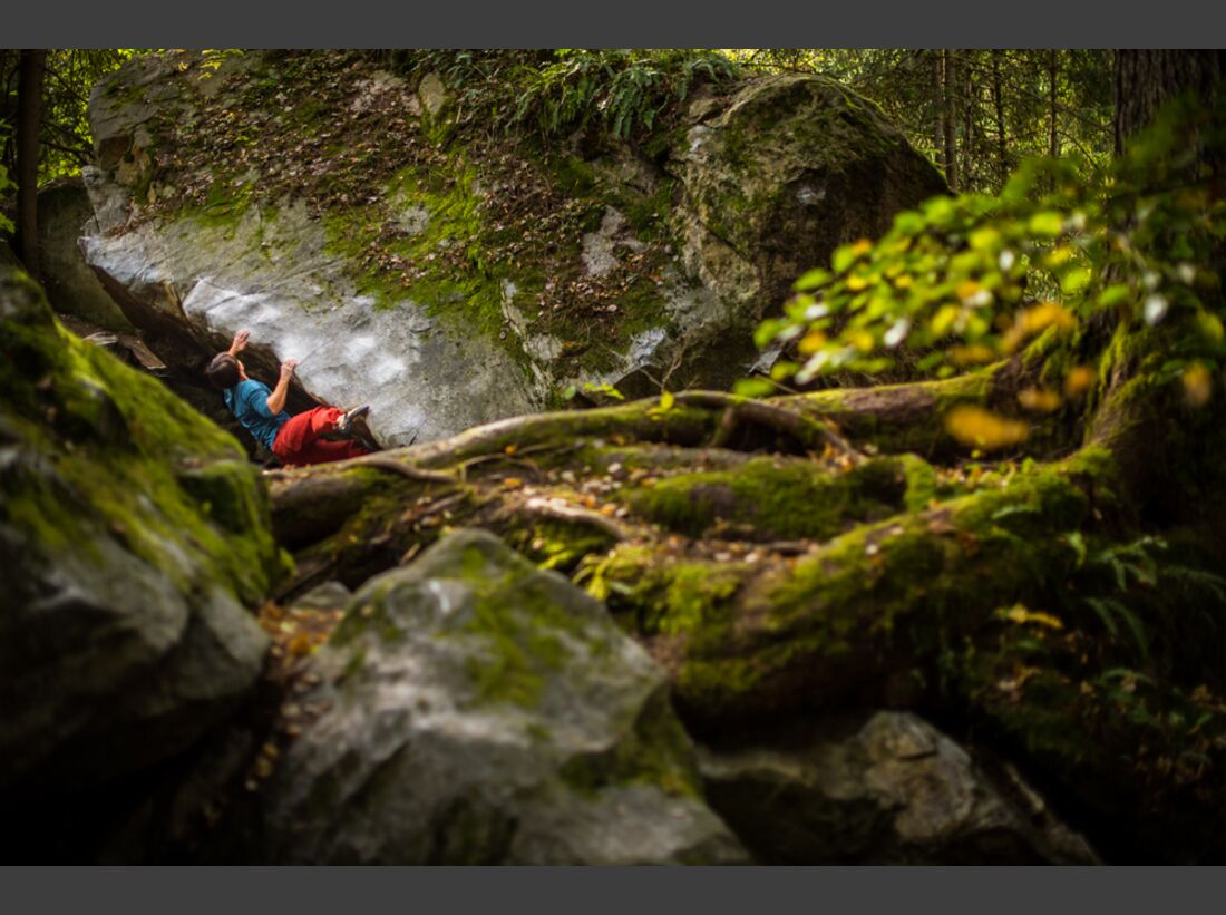 kl-reel-fotowettbewerb-2016-sherwood-forest-oetztal-c-patrick-schwienbacher-pas-7148 (jpg)